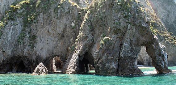 immersioni alle isole Tremiti: lo scoglio dell'Elefante